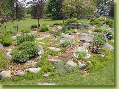 Our own rock garden at Jewett.  Come and visit us to get some ideas for your garden.
